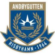 Andoygutten IL logo