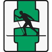 Heming Fotball logo