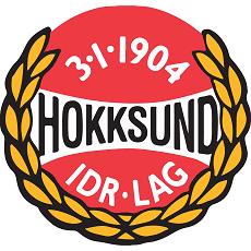 Hokksund IF logo